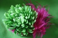 6_chrysanteheme.jpg